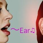 耳は、えらいよ。