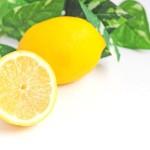 そのレモンのひと搾りが骨粗鬆症を防ぐ