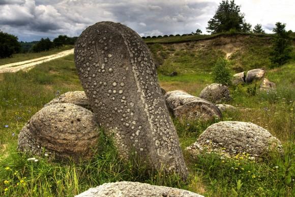 石も生きている